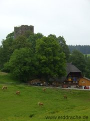 ruine-waldau